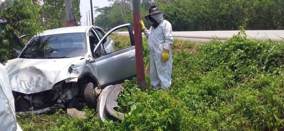 Personas atacadas por abejas tras accidente