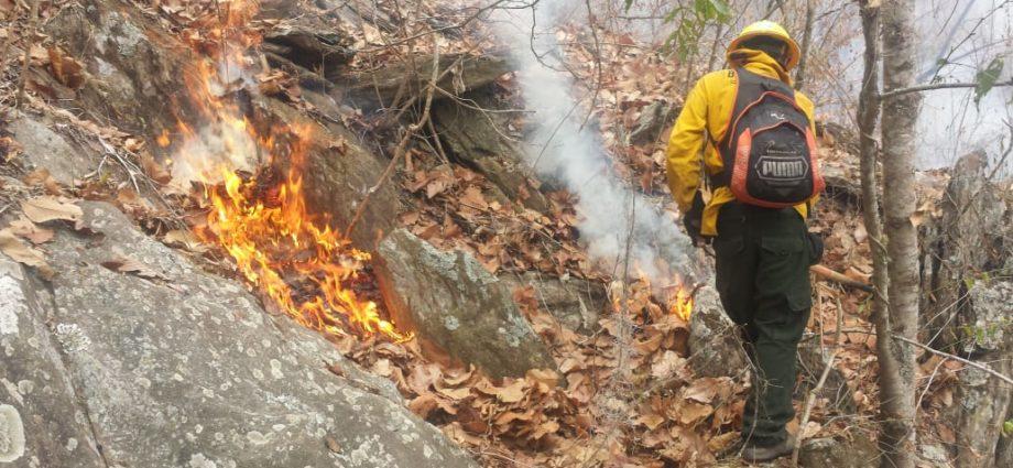 Alerta Roja Municipal en San Andrés Petén por incendios